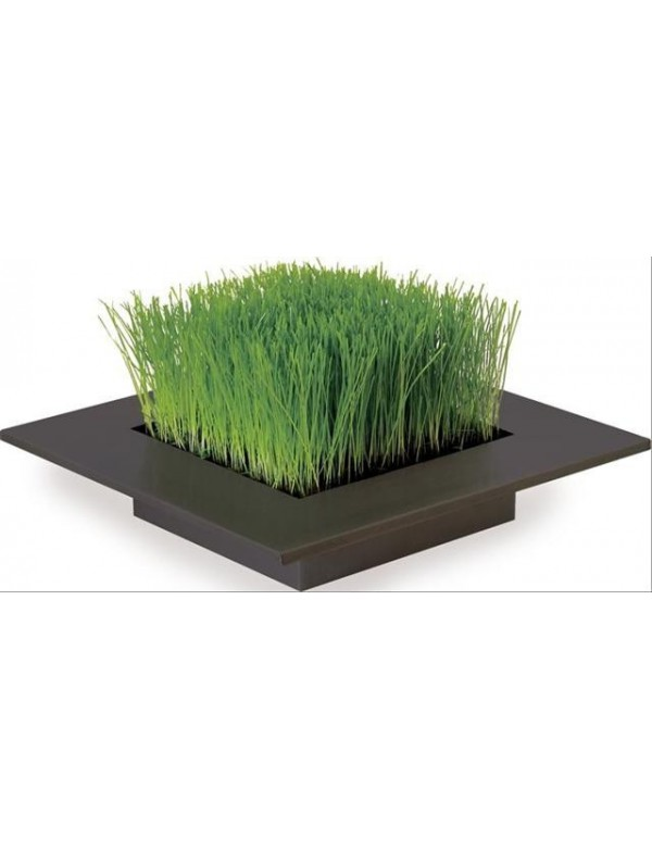 Zinken Tray, Decoratief Gras